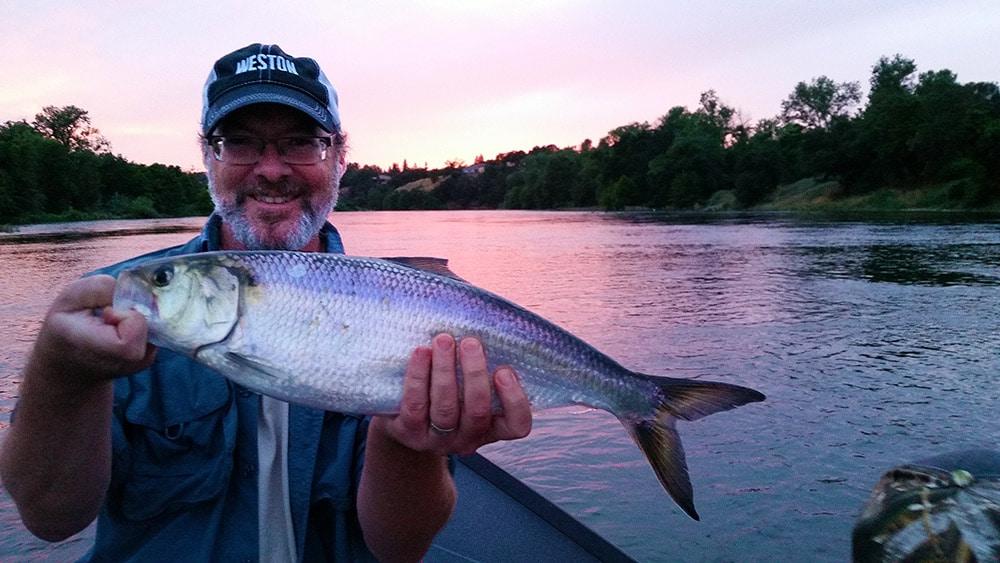 1608155902 Hank con pescado de goma CÓMO cocinar y comer tarpon: Tarpon fish