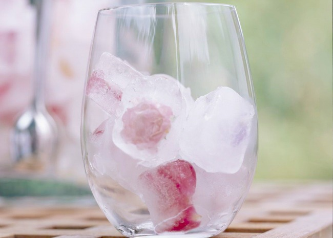ROSE_ICE-CUBES.-PHOTO-BY-MEREDITH-1